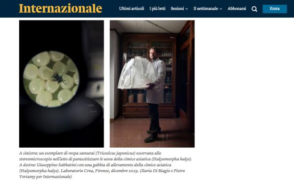 http://www.ilariadibiagio.com/site/files/gimgs/45_schermata-2019-12-16-alle-135804.png